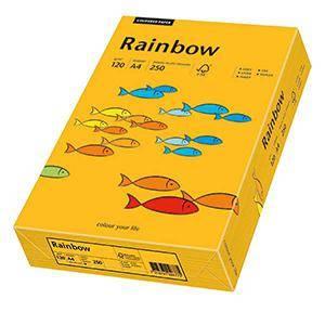 Krāsains papīrs A4,  120g/m2,  250 loksnes,  22 gaiši oranža